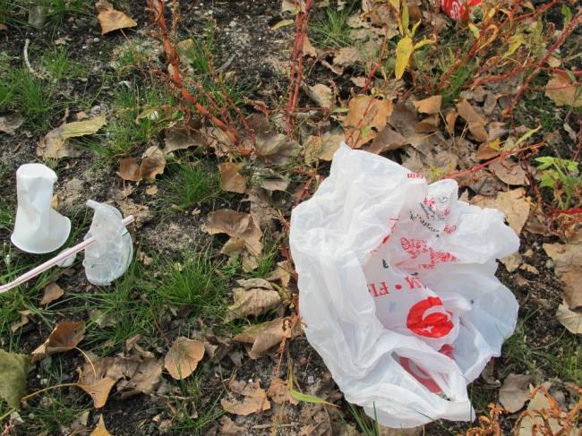 捨てられたプラスチックゴミ