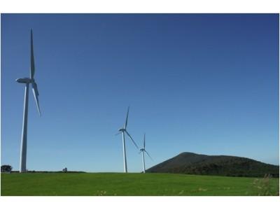 再生可能エネルギー由来の電力への切替えを電力直接契約店舗全店にて完了