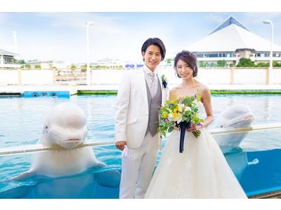 【横浜・八景島シーパラダイス】シロイルカと一緒にフォトウェディング!シーパラでしか体験できないニューノーマルな特別プラン