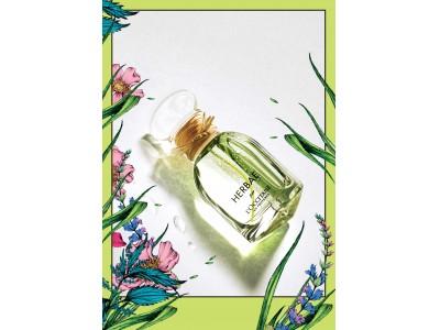 ロクシタンから、プロヴァンスの緑豊かな草原を感じる香り。「エルバヴェール」コレクション登場。