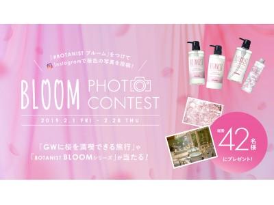 桜色の写真を投稿して、GWに桜を満喫できる旅行が当たる!「BLOOM PHOTO CONTEST」2月1日(金)より開催