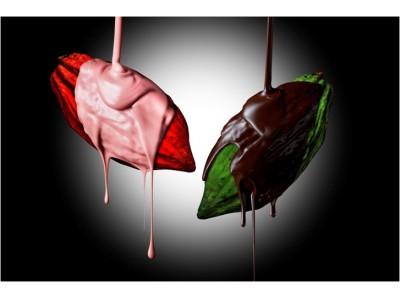 ミニャルディーズ専門のパティスリー【UN GRAIN】ANA インターコンチネンタルホテル東京「チョコレート・センセーション」チョコレートの魅力を学ぶワークショップに出展