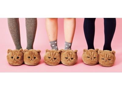 """SNSの人気猫しょんぼり顔の""""ふーちゃん""""とコラボした「ぬいぐるみみたいなもふもふスリッパ」が『フェリシモ猫部(TM)』から新登場"""