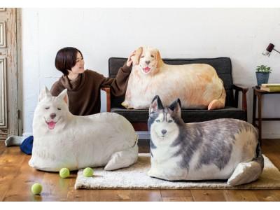 わが家に大型犬が登場!「大きなワンコの布団収納クッションケース」がフェリシモYOU+MORE!から新登場