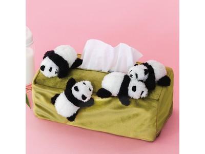 のそのそ、スヤスヤ。 赤ちゃんパンダまみれのボックスティッシュカバーがフェリシモ「YOU+MORE!」から誕生。