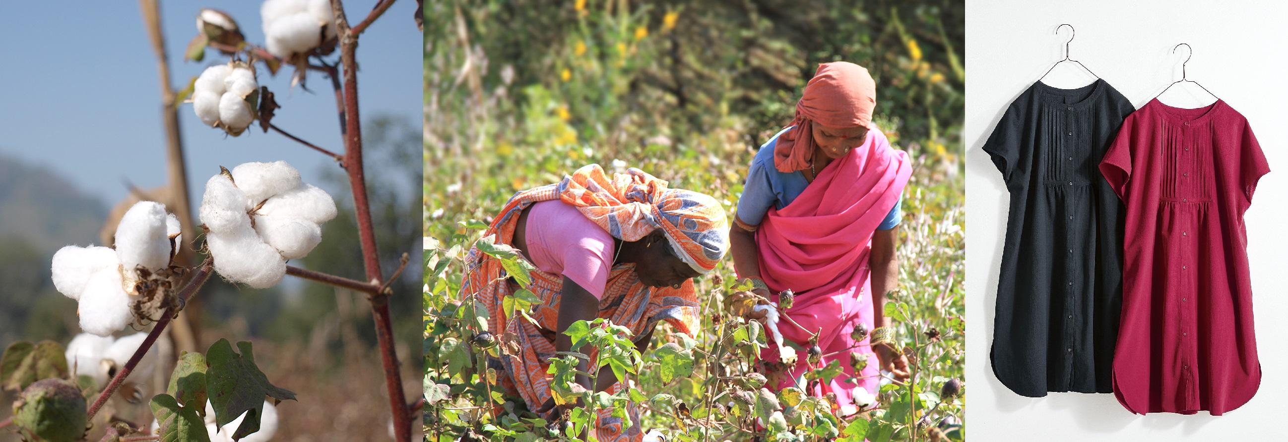地球と人にやさしいオーガニックコットンの服作り、フェリシモLive love cotton(リブ ラブ コットン)プロジェクトで集まった基金総額が530万円以上となったことを発表