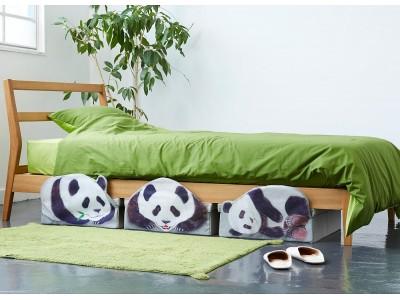 パンダがおうちでかくれんぼ!?「パンダのベッド下収納ボックス」がフェリシモYOU+MORE!から誕生