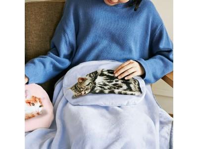 膝の上で猫がゴロゴロくつろぐ「クッションブランケット」が『フェリシモ猫部』から新登場