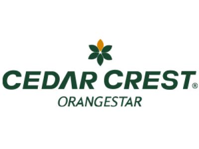 リラックスできる履き心地の高機能性コンフォートシューズ「CEDAR CREST」 ORANGESTARシリーズより 2月4日 新発売