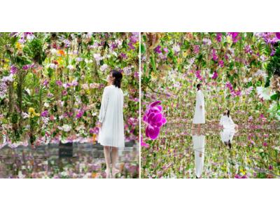 「Garden Area」オープン記念、チームラボプラネッツがお花のサブスク「ブルーミー」会員様を特別招待