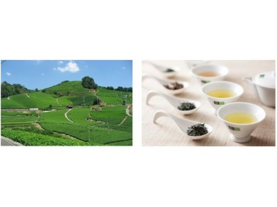 お茶の京都 × ホテル椿山荘東京東京で京都を味わう大人のゴールデンウィーク