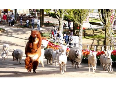 【那須りんどう湖レイクビュー】牧場でほのぼのと♪新緑の季節に動物達も元気にダッシュ!最新の動画を公開しました♪