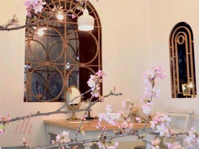 【ith/イズ】桜で彩られた、春のアトリエで結婚指輪選び