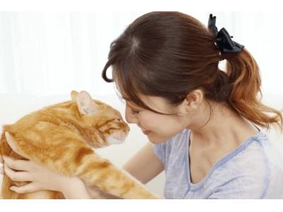 諒設計アーキテクトラーニングスクールの「猫の育て方アドバイザーW資格取得講座」通信講座を新規開講しました。