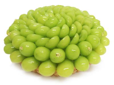 大粒で皮ごと食べられる大人気のフルーツ!島根県産ぶどう「シャインマスカット」のケーキがカフェコムサから登場