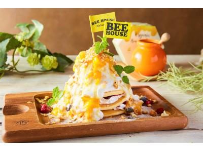 夏のトロピカルスイーツ「【夏季限定】たっぷりマンゴーのアイスパンケーキ」を7/8(月)より期間限定、88円で提供!『BEE HOUSE 渋谷店』で実施