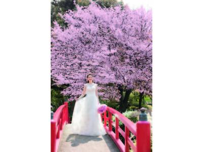 桜の名所で結婚準備!ホテルの豪華試食&お花見も叶える、プレミアムフェア開催