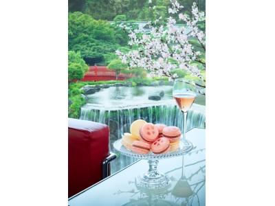 『桜』と『酒』でお花見気分!春限定の
