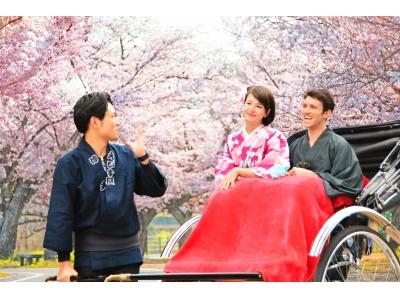桜華やぐ紀尾井町を満喫!春を楽しむ宿泊プラン3選