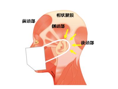 ほぐし(※1)、促す(※2)、頭皮から顔の引締めと髪育。2021年1月20日開始 「頭・筋膜リリースリフト」開始のお知らせ