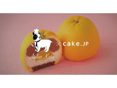 切ってびっくり!まるごとシリーズ第3弾!「まるごとオレンジケーキ」をCake.jpで2月1日(月)販売開始!