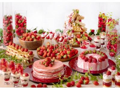 鮮やかな紅色と甘さが特徴の人気品種「とちおとめ」が毎日入荷!