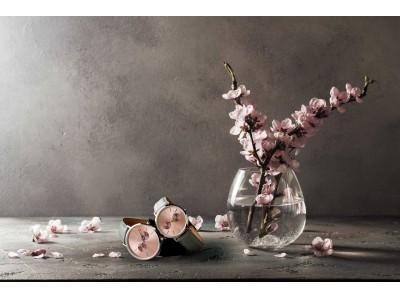 """日本とデンマークの友好のシンボル""""桜""""をイメージしたコレクションがBERING(ベーリング)から数量限定で発売されます。春らしいカラーリングが特徴です。"""