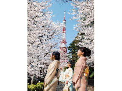 桜の時期に訪れる外国人のお客さま向けに、着物のレンタルと着付けサービスを開始