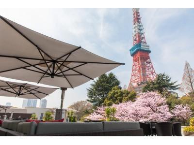 【東京プリンスホテル】東京タワーとともに満開の桜を楽しむ「桜まつり 2020」を開催