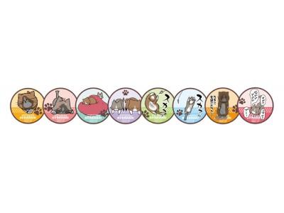 """『鴻池剛と猫のぽんた ニャアアアン!』×「アニメイトカフェ」 猫の気持ちになって食べてみたい!メニューやグッズを公開! """"ぷにぷにチョコレートマシュマロ""""プレゼントキャンペーンも実施"""