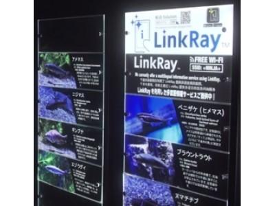 インバウンド向け多言語対応を手軽&スマートに実現!サケのふるさと 千歳水族館への「LinkRay」導入事例を公開