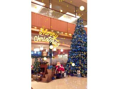 【ロイヤルパークホテル】テーマカラーは「ジャパンブルー」30thアニバーサリークリスマスディスプレイを実施。
