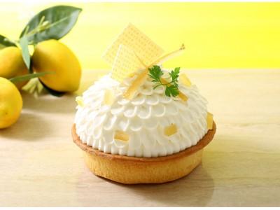 【アンテノール】のキュンと甘酸っぱい「レモンのタルト」。みんなで楽しめる12cmサイズを1週間だけ限定発売!