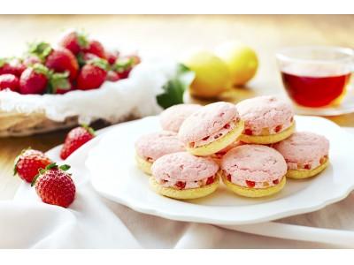 新東京みやげブランド〈東京レモンチェ〉に冬季限定の味わいが登場!東京レモンチェ~春色いちごとレモン~  新発売新しい味わいは、レモン × いちご!レモン好きを虜にする