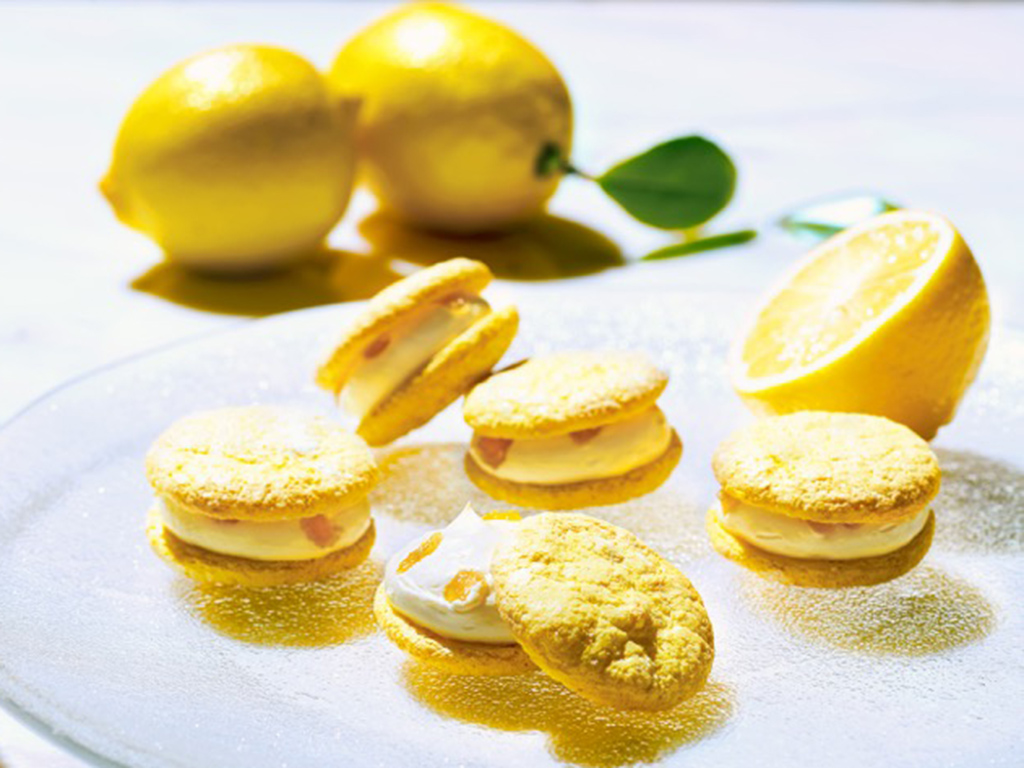 """さわやかな夏を届ける甘酸っぱいレモンのお菓子が大集合!【アンテノール】 """"レモンフェスタ""""を開催"""