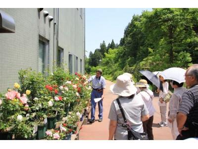 【福井県越前町】みどりの日は、植物園へ行こう!福井総合植物園で植物園の日特別イベント開催