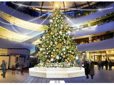 高さ8m!本物のモミの木のツリーが登場「横浜ベイクォーター クリスマスイルミネーション」11月3日(土・祝)~12月25日(火)毎日開催!