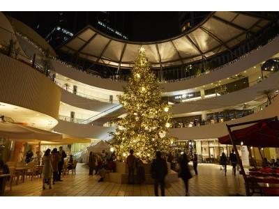 """テーマは""""サンタクロースの庭"""" 高さ8mのモミの木が登場する横浜ベイクォーターのイルミネーション「クリスマスライトガーデン」11月2日(土)開始!"""