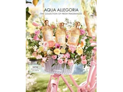 ゲラン フレグランス 「アクア アレゴリア」 に新たな香りが誕生 太陽の恵みに満ちた 「ベルガモット カラブリア」