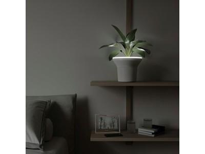 【LED照明×植木鉢】ほんのり光を照らすオーラプランターがヴィレヴァンオンラインに新登場
