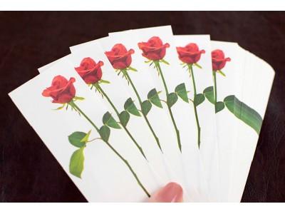 【気持ちを伝えよう】100本の花束メッセージヴィレッジヴァンガードオンラインで取扱い開始!!