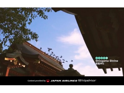 JAL×トリップアドバイザーによる「日本特集サイト」が始動