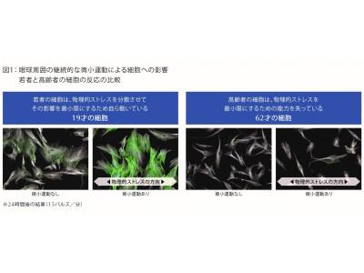 第75回米国皮膚科学会議(AAD)の最新研究フォーラムにおいてエスティ ローダーの画期的な研究データが発表されました。