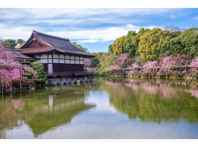 京都 平安神宮会館で8日間限定の一般公開!絶対に見ておきたい、桜咲き誇る「神苑」と共に愉しむ