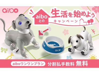 『aiboとの生活を始めようキャンペーン』を4月15日(木)にスタート