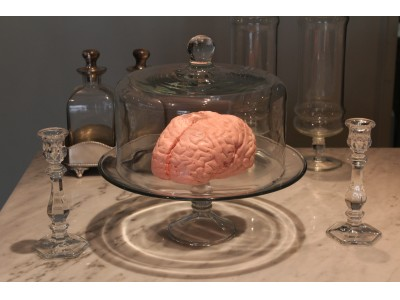 パパブブレのハロウィン第三弾!「実物大?!脳みそマシュマロ」今年も受注販売開始です!