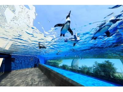 <サンシャイン水族館・SKY CIRCUS サンシャイン60展望台>都民の日カッパバッジ割引!~9月29日(土)~10月1日(月) 3日間~