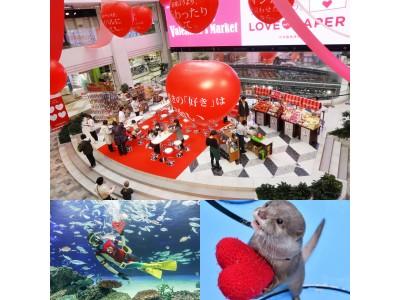 サンシャインシティのValentine's Day ~水族館・展望台・専門店街アルパで様々なスペシャルなバレンタイン企画を実施します~