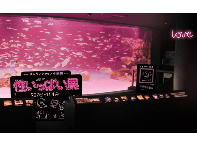 こんな水族館…初めて…!おもわずドキドキする、海の生き物たちの夜の姿を初披露 夜のサンシャイン水族館「性いっぱい展」開催