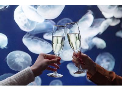 【参加者募集開始】サンシャイン女子道×OZmall 海のクリスマスパーティ in サンシャイン水族館